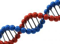 Передается ли эпилепсия по наследству